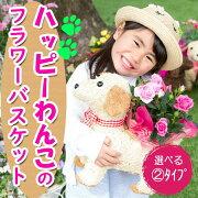 【植物ギフト】季節のお楽しみ♪チビわんこの植物バスケットおまかせ2980円【楽ギフ_メッセ】