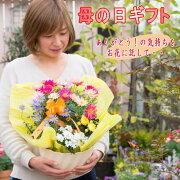 季節のお花の贈り物2980円コース
