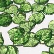 (10個セット)ハートのリーフアクリルチャームグリーン葉花弁葉っぱパーツハンドメイド