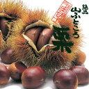 四国奥伊予 城川町産でっかい栗1kg(30〜40個)