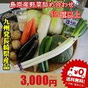 新鮮 野菜 詰め合わせ セット ♪九州 島原発 送料無料 定番野菜含む12種類 ナオヤおまかせ…