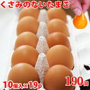 高級卵 たまご10個×19 巣ごもり 免疫アップ