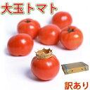 訳あり トマト 大玉 送料無料 約4kg 16個か20個入り 加温とまと 産地直送 農家直送 お取り寄せ