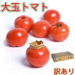 【訳あり】九州発長崎島原産ちょっと大きめの加温トマト桃太郎、麗容、りんかの三種類混ぜあわせ約4kg