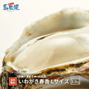 【隠岐島直送】いわがき春香Lサイズ5個セット 約 1.5Kg