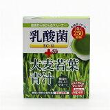 国産青汁 24包入 乳酸菌EC-12 プラス 置き換え 抹茶風味 1包に250億個の乳酸菌 送料無料