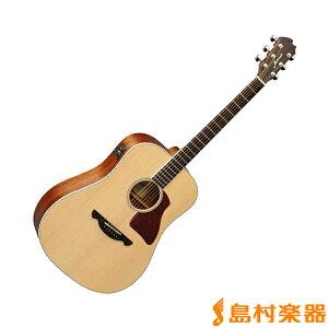 【送料無料】James / ジェームス JD600E NASカラー エレアコギター 【アコギ初心者】