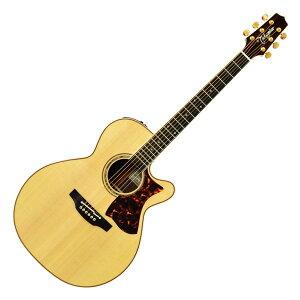 【送料無料】Takamine / タカミネ DMP50S NAT エレクトリックアコースティックギター【島村楽器限定商品】 【新品】
