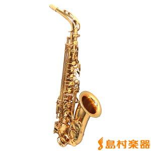 島村楽器のDeYu A500 入門用アルトサックス 【デユー】