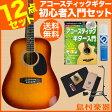 Vanguard VDG-01 TS ベーシックセット アコースティックギター 初心者セット 【バンガード】【オンラインストア限定】