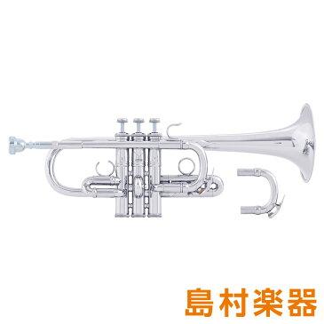 Bach ADE190S SP Artisan トランペット E♭ D管 銀メッキ イエローブラス 【バック アルティザン】