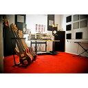 Primacoustic LONDON 8 (ベージュ) 吸音パネルセット [約4.9畳]対応 【プライマコースティック London Room Kit】