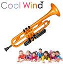 Cool Wind TR-200 オレンジ プラスチックトラ...