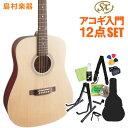 SX SD204 NAT アコースティックギター初心者12点...