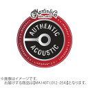 Martin MA140T アコースティックギター弦 80/20 Bronze