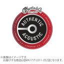Martin MA175T アコースティックギター弦 80/20 Bronze