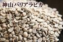 下山珈琲★神山バリアラビカ★コーヒー豆 増量250g