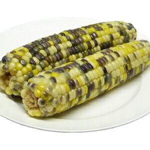 冷凍粘玉米ー紫色 【中華食材】