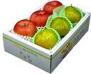 おすすめフルーツギフトセット贈り物に!最適!食の宝石箱 【C−2】特選フルーツセット2種類大...