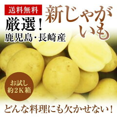 九州長崎・鹿児島産新じゃがいもお試し約2K箱ホクホクの馬鈴薯をお届けします。【送料無料】 【グ…