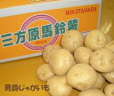 【こだわり野菜】静岡県産三方原じゃがいも【男爵】約10K箱 S〜2Sサイズ