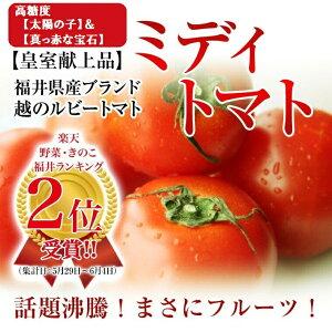 福井県産越のルビートマトフル...