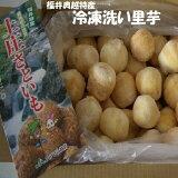 【冷凍】【業務用】*福井県特産洗い里芋秀品約5K箱 芋煮会・芋煮・煮物 冷凍里芋 送料無料