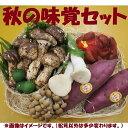 秋の味覚セット松茸150gと秋のお勧め野菜果物セット⇒【送料無料-クール便】
