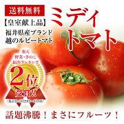 ブランド ルビートマトフルーツミディトマト