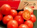 話題沸騰!まさにフルーツ!静岡産アメーラトマト 1K箱【送料無料】噛み締める毎に甘味が広が...