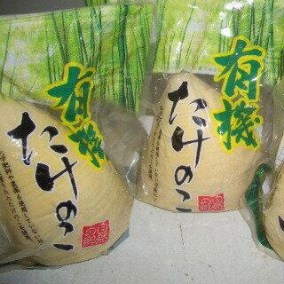 中国たけのこ水煮丸200g×5袋