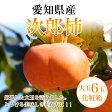 愛知県産【次郎柿】特選 大玉3L・4Lサイズ6玉化粧箱【送料無料】