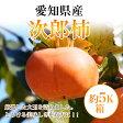 愛知県産【次郎柿】 約5K箱18玉〜24玉【送料無料】