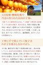 商品画像:日本通販ショップ楽天市場店の人気おせち2018楽天、富山干し柿化粧箱(2Lサイズ12個化粧箱)【送料無料】【お歳暮・贈答用に】【おせち料理に】【グルメ2013_食品】