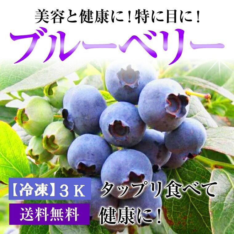 【冷凍】福井県産ブルーベリータップリ!約1Kg×3⇒送料無料