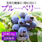 【冷凍】福井県産ブルーベリータップリ!約1Kg⇒送料無料