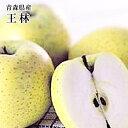 ★青森産りんご【王林】約5K