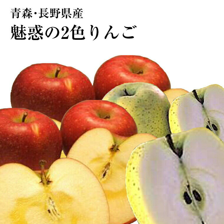 福井くいしんぼ『青森産長野産2色りんご詰め合わせセット』