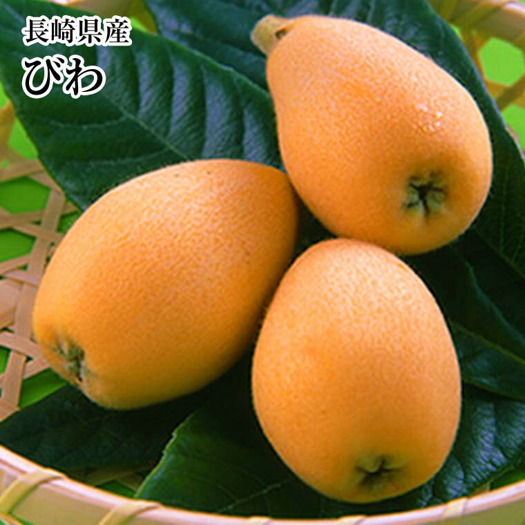 フルーツ・果物, びわ 912