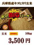 【最安値に挑戦】新米 絶対お得!【R2年産】送料無料!一部の地域を除く、兵庫県産 キヌヒカリ玄米 10kg キヌヒカリの特徴は、その輝きの素晴らしさと、食味の良さと言われています。【お米屋しんちゃん】