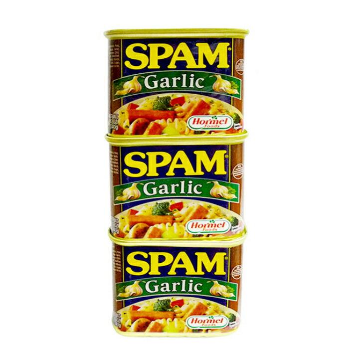 スパムガーリック 340g×3缶セット 新栄商店 スパムポーク 沖縄 スパムおにぎり 防災備蓄用 レターパック520発送