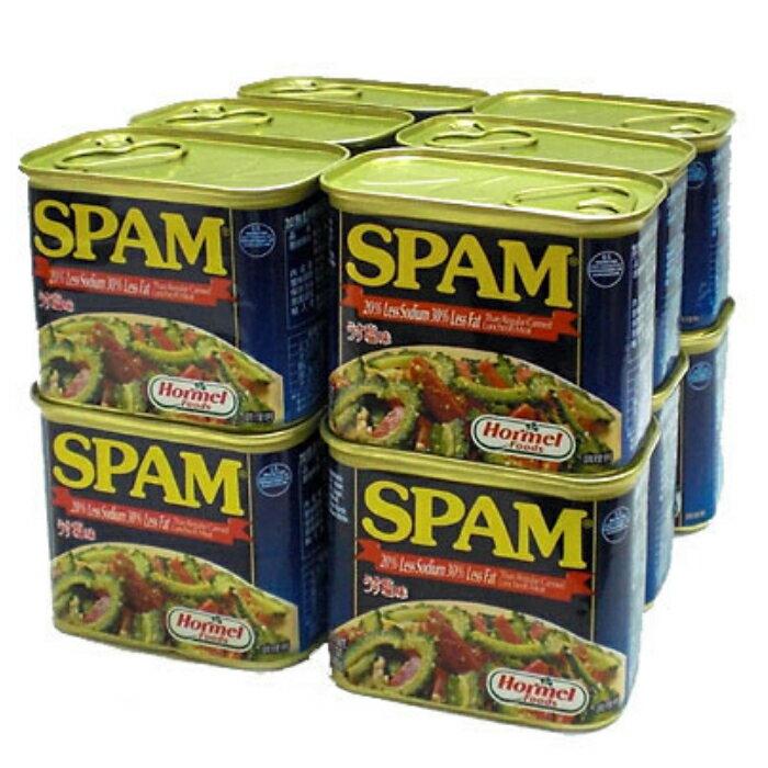 スパムうす塩 340g×12缶セット 新栄商店 スパムポーク 沖縄 スパムおにぎり 防災備蓄用 全国送料無料