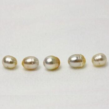 南洋白蝶真珠パールルース両穴5ピース10-9mmナチュラルカラー