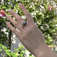 タヒチ黒蝶真珠:PT900プラチナ:リング:ダイヤモンド:パール:リング:グリーン系:11mm:指輪