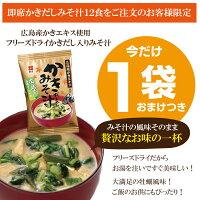 ☆即席かきだし入りみそ汁計12食入生みそタイプ・乾燥とうふわかめ付ネコポス送料無料味噌汁