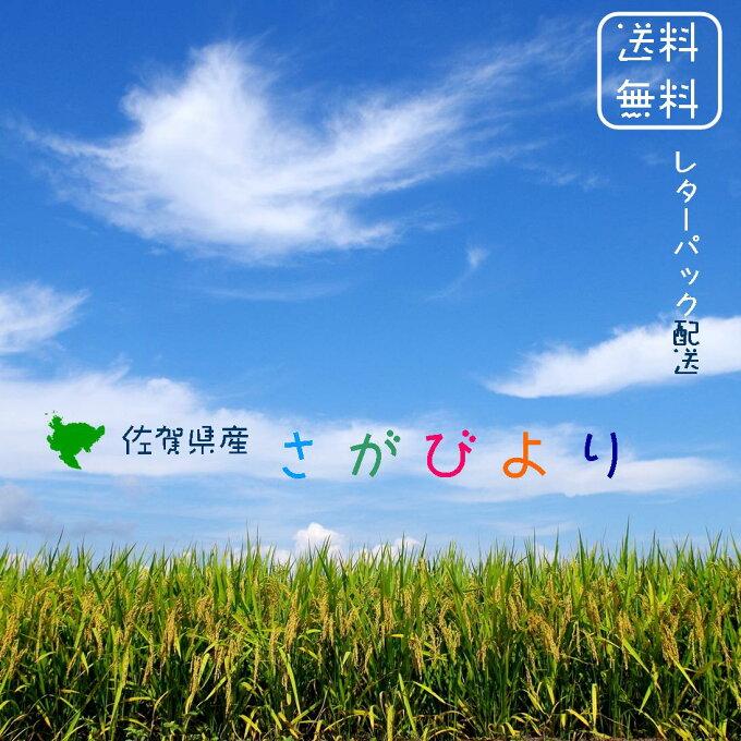 【送料無料】佐賀県産 さがびより 白米 2合(300g)×3 令和2年産 【免疫力ア...