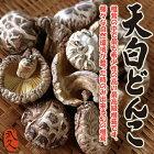 天白どんこ50g最高級原木椎茸九州産