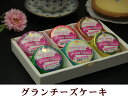 【店内全品ポイント5倍以上】【白濱洋菓子店】グランチーズ 6...