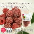 【国産】【冷凍】ラズベリー・サマーフェスティバル200g