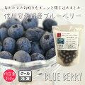 【国産】冷凍ブルーベリー250g